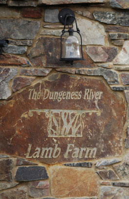 Dungeness River Lamb Farm
